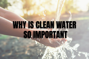 Blog: Clean Water Importance Image #1